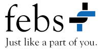febs Consulting GmbH Logo